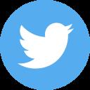 1460323834_social-twitter-circle